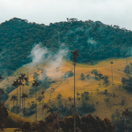 SOCIAL DISTANCING BY NATURE: COLOMBIA TRAVEL EXPERIENCES TO HELP YOU ESCAPE THE PANDEMIC
