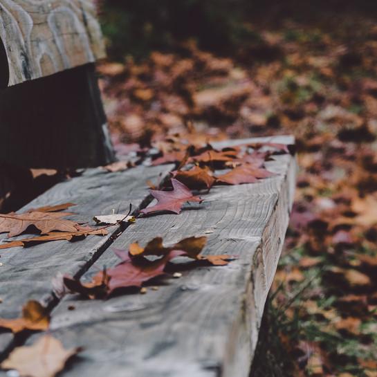 WEERBERICHT: De herfst komt er aan