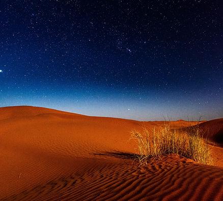 Yoag House Desert Bliss