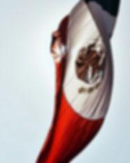 Image by Luis Vidal