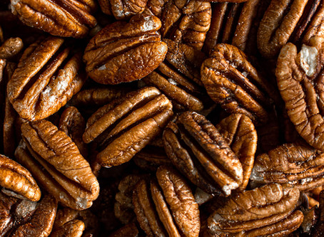 What did the pecan say to the walnut??
