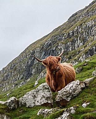 Blaycation Travel - Road Trip Adventures in Scotland