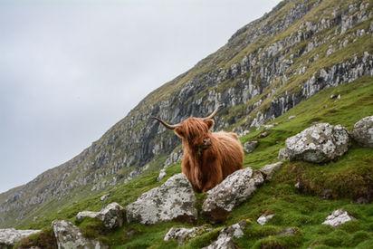 Lugares que ver en Highlands