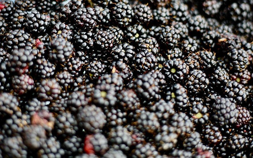 Australian Frozen Blackberries 1KG