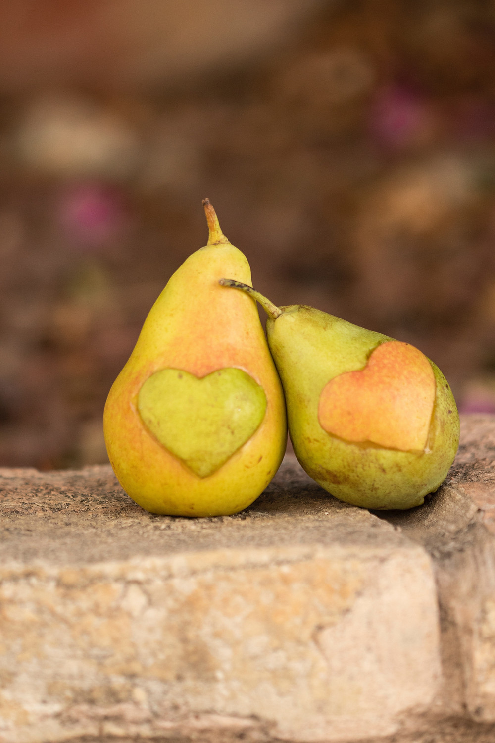 Two pears with hearts carved on them