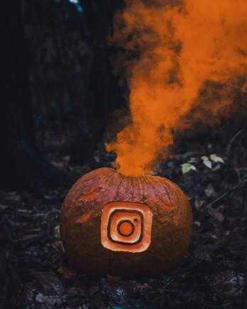 @gautegg på Instagram