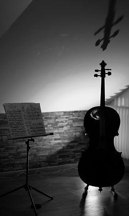 Les enfants, les adolescents et les adultes de tous les niveaux peuvent s'incrire aux cours privés de violoncelle.