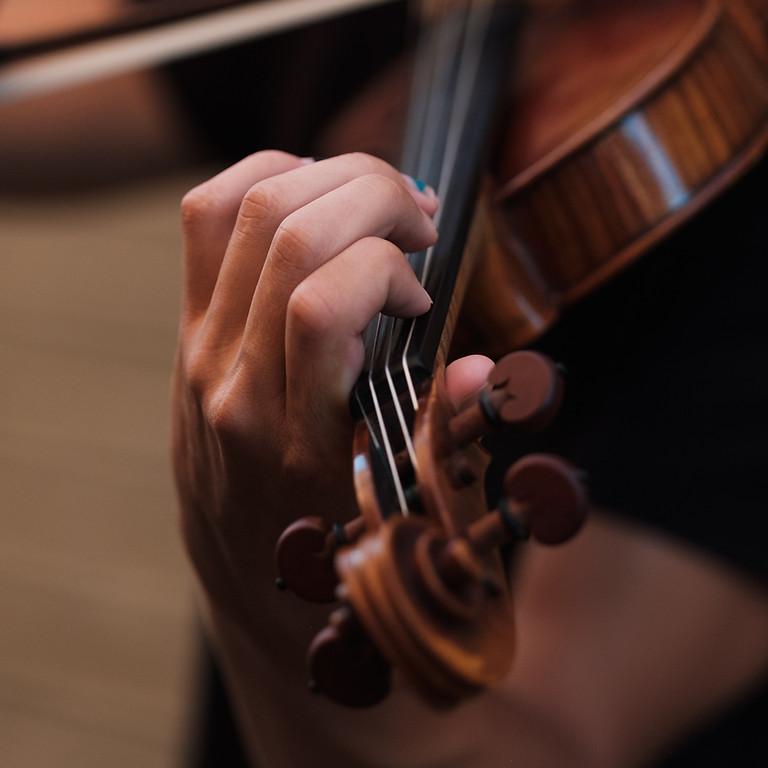 Violin ( Grade 2-8)