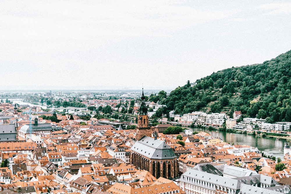 Incredible Countries You'll Explore on the Rhine