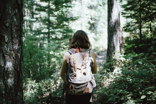 Pagosa Springs Hiking
