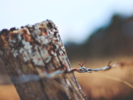 Change Agents and Chesterton's Fence
