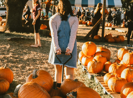 Fall in Love with DFW KD's Fall Fest