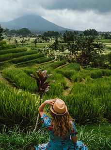 Indonesia, with over 17,000 islands, is a land of contrast.  Myriad cultures have spawned many languages, art forms and foods, while Christians, Muslims, Animists and Buddhists are all found in this sprawling tropical paradise.  The natural diversity defies comprehension: from volcanoes to rain forests, home to orangutans, and from highland lakes to gorgeous beaches, the country's beauty is impossible to describe.  Add to this ancient ruins, bustling cities and tribal villages and you have a country unique to this world. This adventurous tour of Indonesia shows you Sumatra, Java and Bali in a three-week highlights holiday.