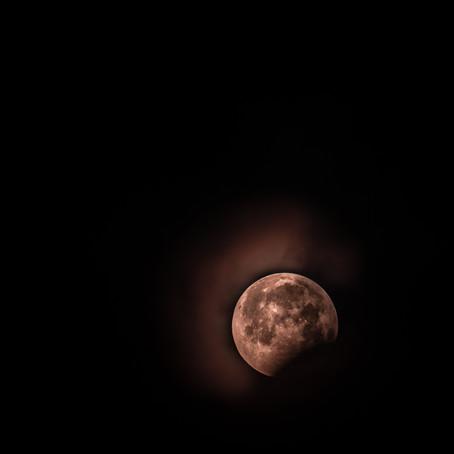 Daily Meditation Reading / New Moon in Aquarius
