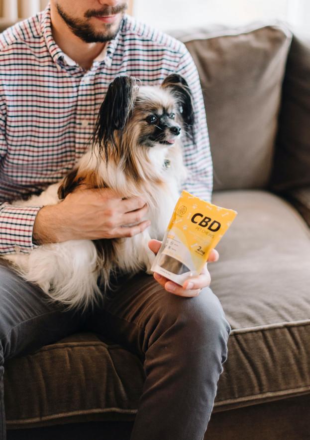 NEW! Pet Vending