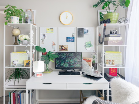 5 Perfect Plants for the Home Office