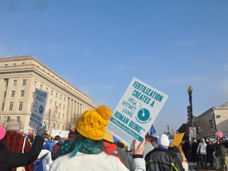 7 Ways to Support Life After the Virtual March for Life