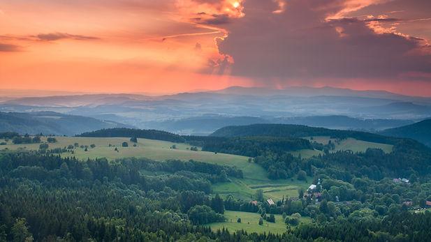 Image by Dawid Zawiła