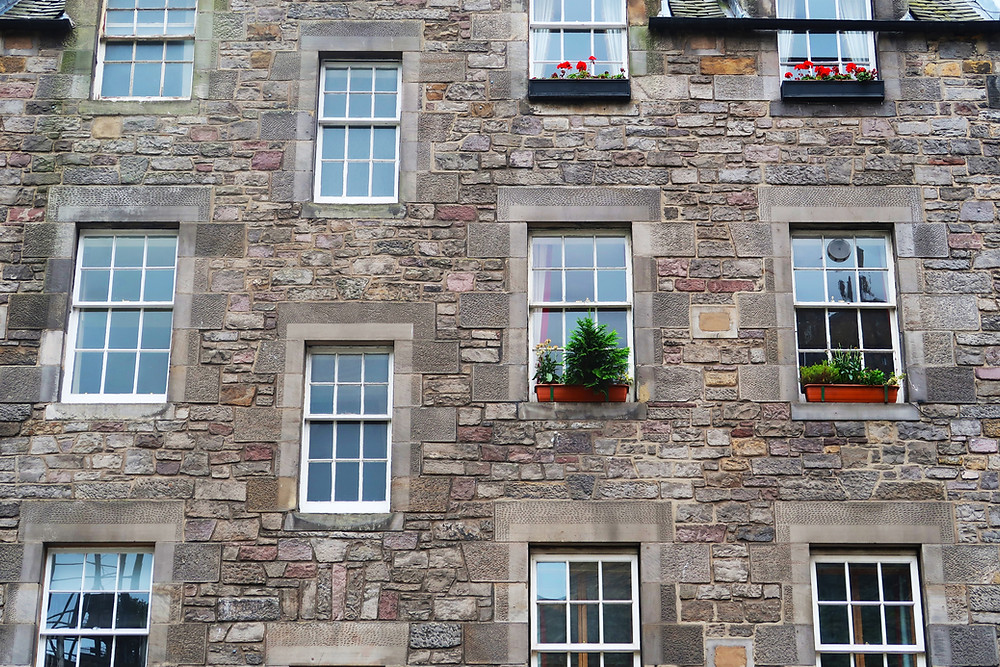 Sash windows at the rear of a tenement some with window boxes growing