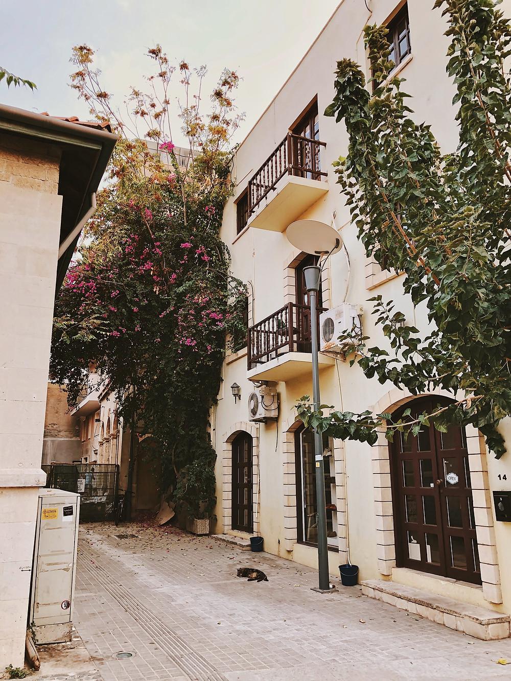 רחוב באי קפריסין
