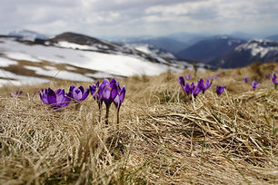 Image by Biegun Wschodni
