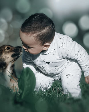 Toddler crouched down with puppy, noses touchingImage by Mohamed Nohassi