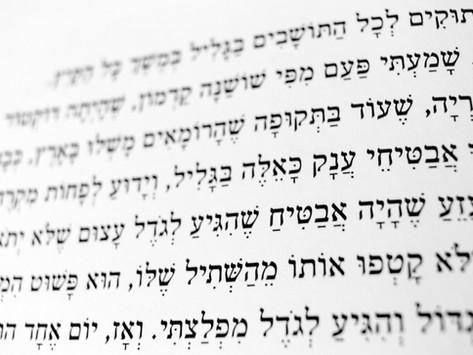 """ד""""ר ניקולא יוזגוף-אורבך   הפרטת העברית"""