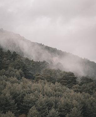 Image by Arw Zero