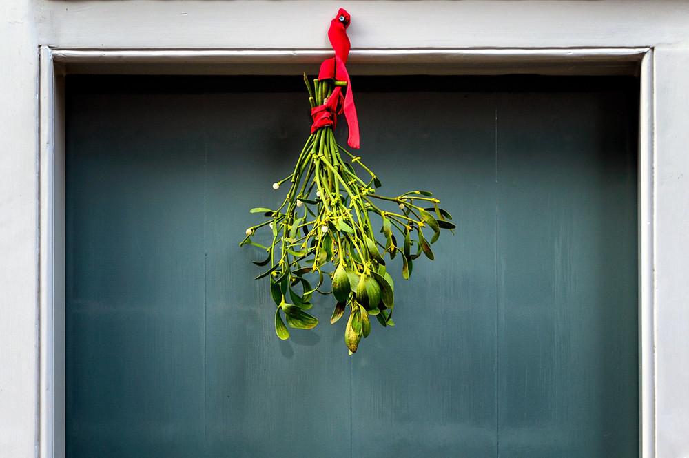 Mistletoe at Mustard Seed Sentinel