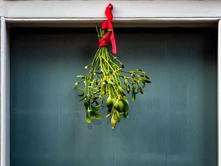 Mistletoe As Cancer Therapy