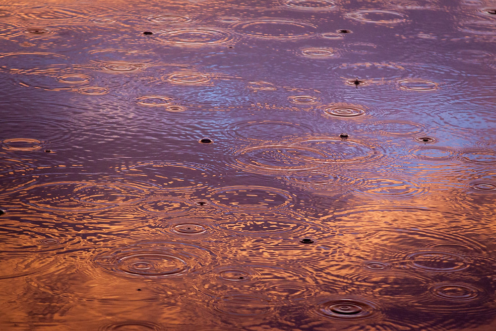 A puddle with raindrops