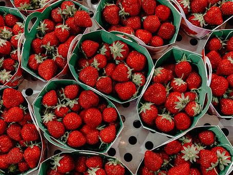 Go Wild for Berries!