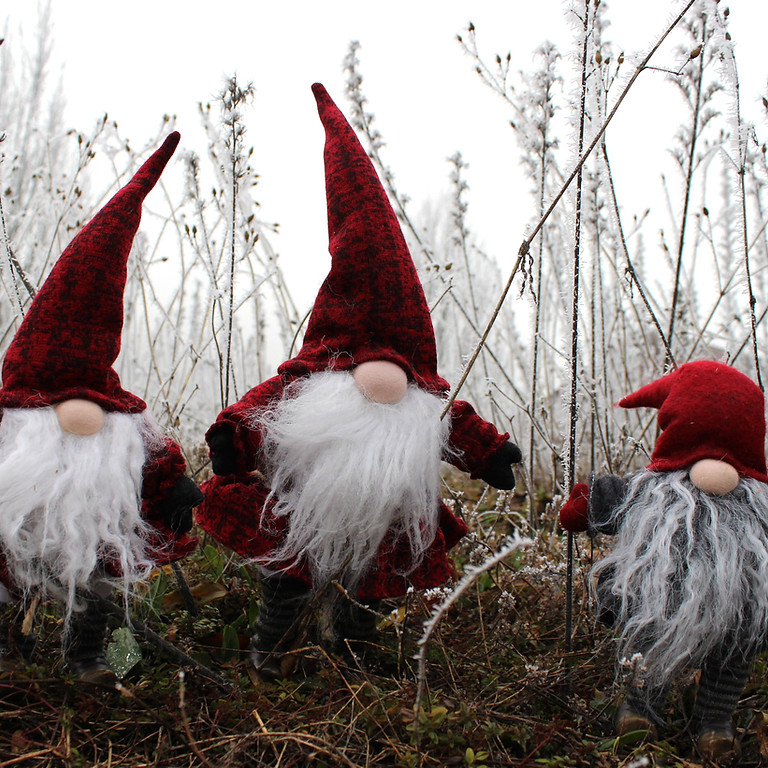 Holistic Christmas in November!!!