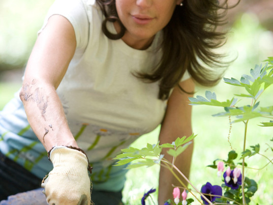 In Gardening
