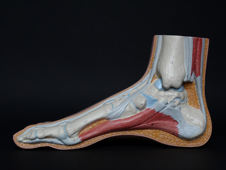 4 exercises to Help Your Achilles