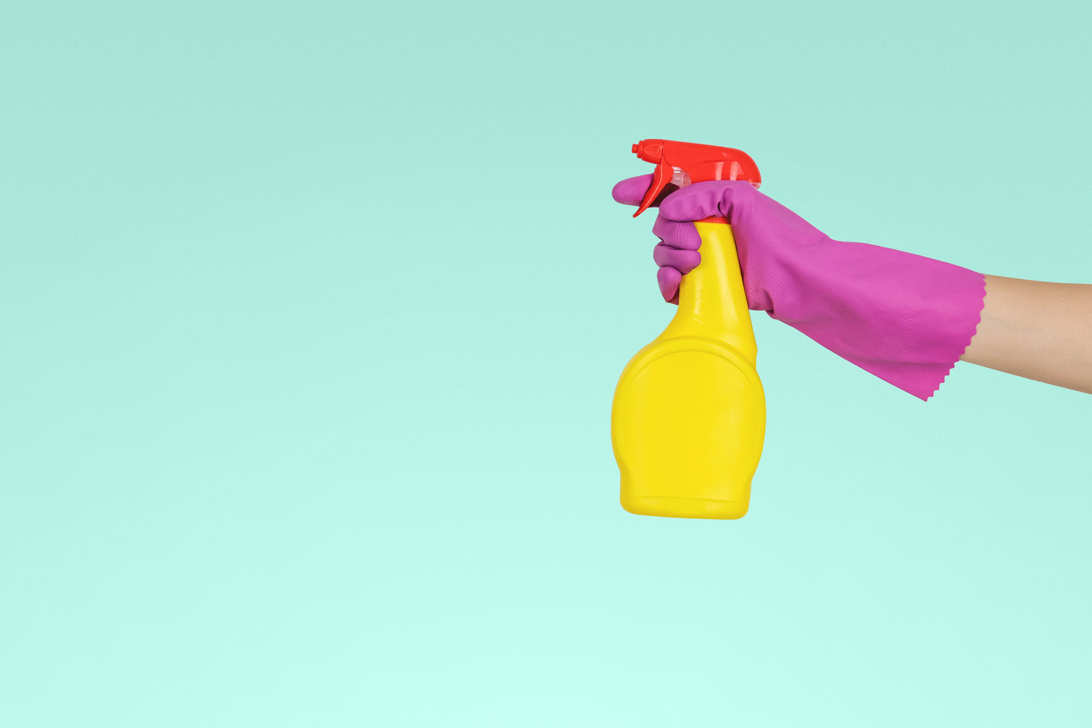Regular House Cleaning Service