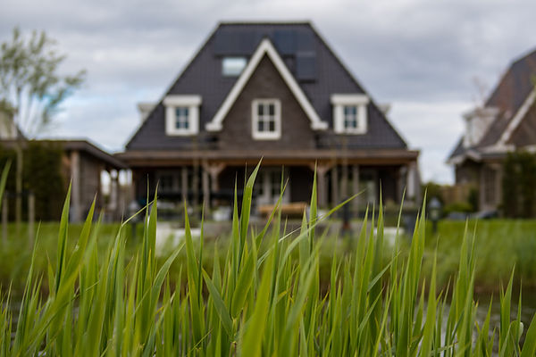 grass with blurred house in background
