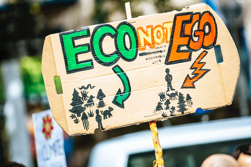 Choosing to care about sustainability will take looking at the eco and not the ego