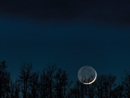New Moon November 14, 2020