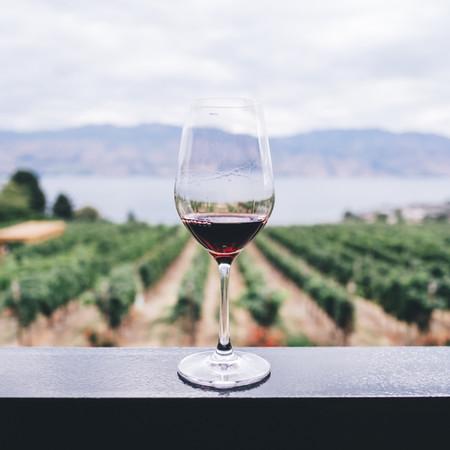תשתו יין ביקב משפחתי מקסים