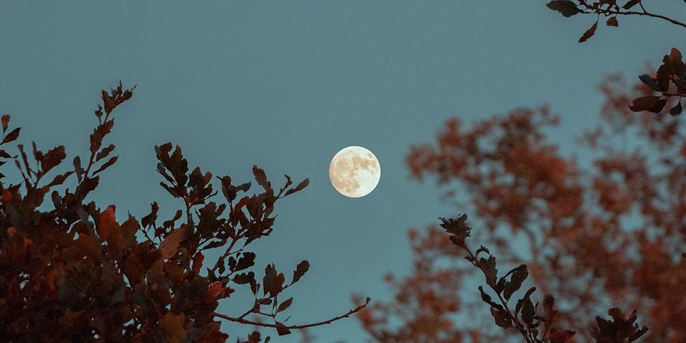 October 2020 Full Harvest Moon Meditation