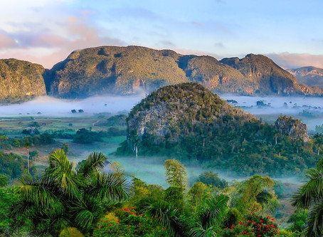 Jewels of the Earth: 4 Stunning Rainforests That Need To Be On Your Bucket List