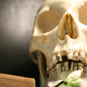 Jaw Cysts: Definition, Symptoms and Treatment