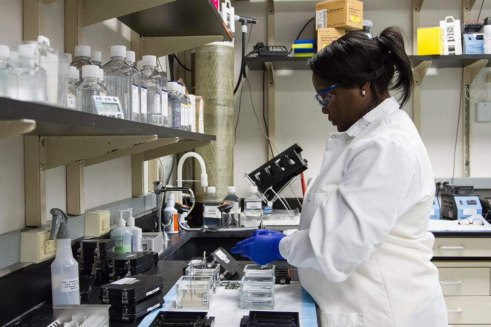 scientist researching in a lab