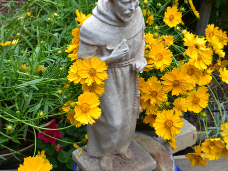 St Francis and the Squirrels