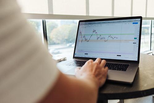 קובץ מעקב הוצאות והכנסות של העסק