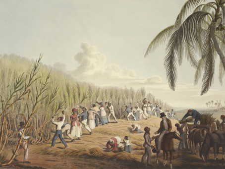 Humanities & Social Sciences Seminar 2: Slave Narratives and the Literature of Abolition