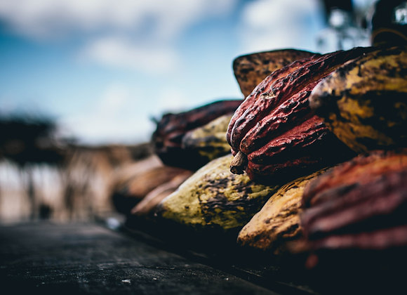 2 Pan Aux Chocolate