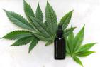 7 Ways Cannabis Helps You Sleep Better