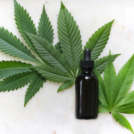 Recapitulación del 2020: los avances en el acceso a cannabis de uso medicinal en Perú